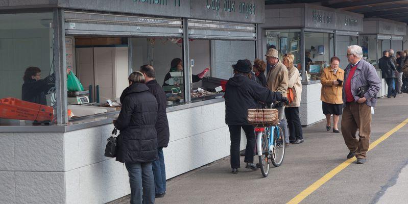 Le marché aux poissons, Groupement des artisans pêcheurs de Calais